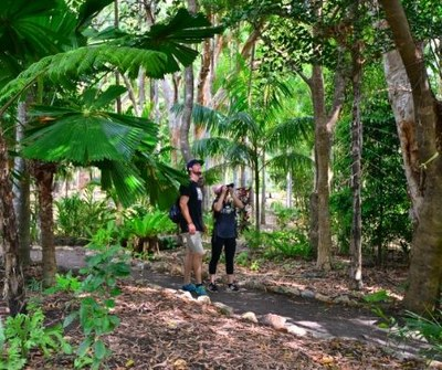 Cooktown Botanic Gardens Hiking
